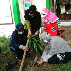 Penanaman Pohon LLHPB PWA Aceh